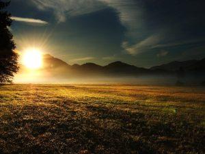 восход солнца над полем